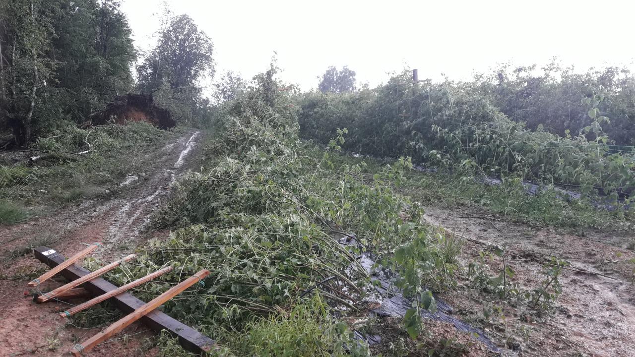 Невреме оштетило усеве и путеве од Камене Горе до Бродарева
