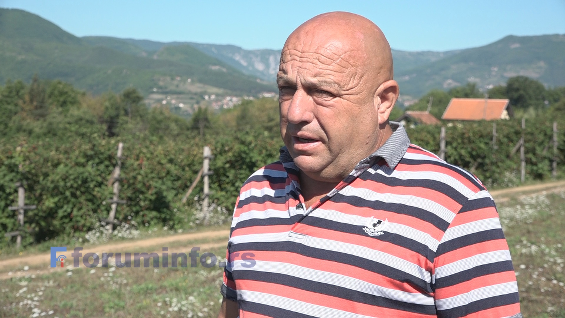 Рефик Хурић Фико: очекујем принос од око 30 тона купине и 50 тона паприке