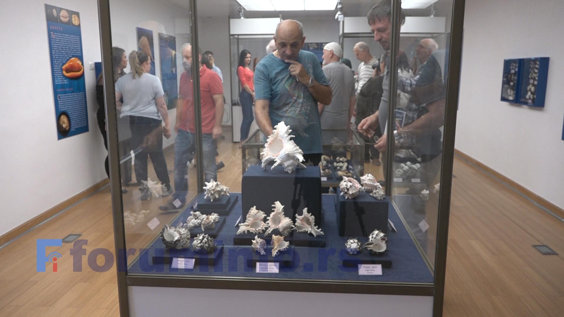 """Изложба """"Шумови мора"""" отворена у Музеју у Пријепољу"""