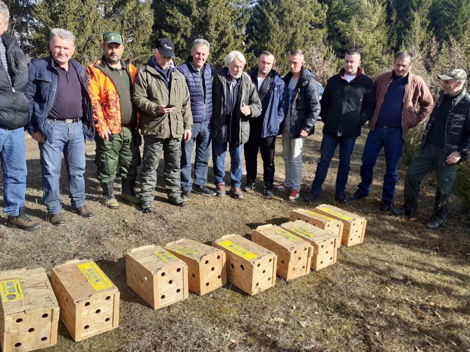 Ловци пустили 16 дивљих зечева у пријепољско ловиште