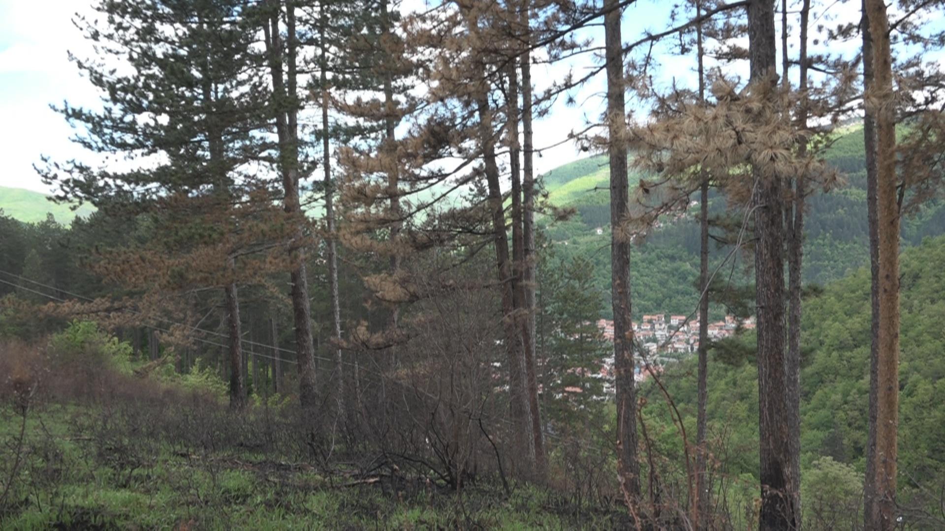 Министарство заштите животне средине финансира изградњу Еко парка на Равнама